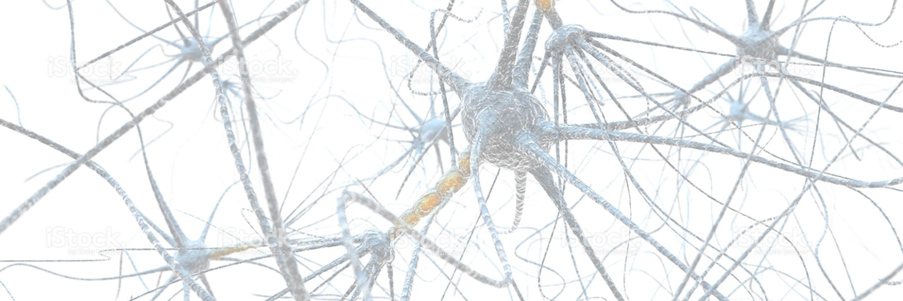 Neuro-Optometric Rehabilitation | Padula Institute Of Vision